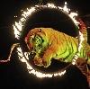 Цирки в Верхней Туре
